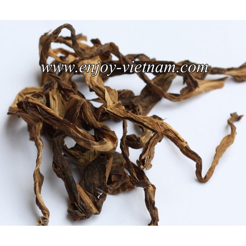 Crinum Latifolium Leaves